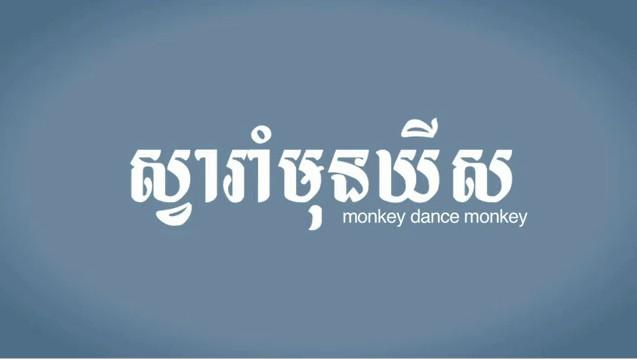 Monkey Dance Monkey